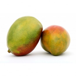 Mango (10)1vnt