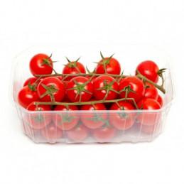 Pomidorai 500g, ant šakų