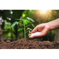 Durpių substratai, žemės, trąšos, sėklos